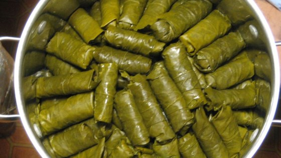 Cooking of the Stuffed vine leaves