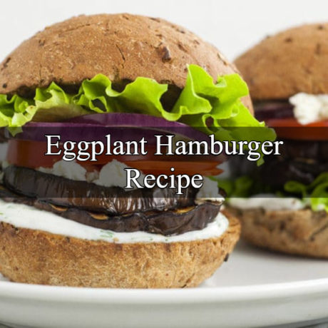 Eggplant Hamburger With Sauce