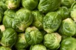 beautiful brilliant green brussels sprouts